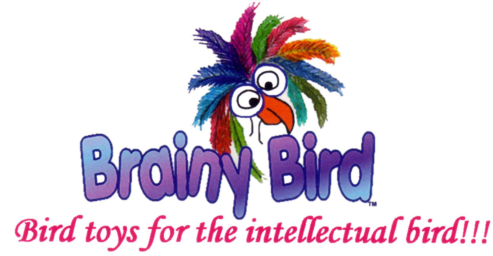 Brainy Bird Toys Logo