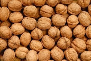 In-Shell Raw Walnuts (50lb)