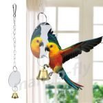 Best Parrot Toys: Parakeet with wings spread, playing with her mirror toy with bells