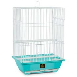 Prevue Pet Products Pre-Packed Assorted Small Cage Styles 6pc
