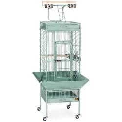 Prevue Pet Products Wrought Iron Select Cage Sage (18x18x57in)