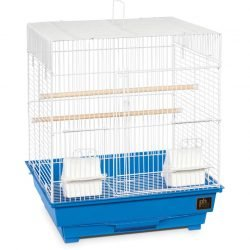 Prevue Pet Products Pre-Packed Parakeet or Cockatiel Cages 16x14 4pc