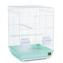 Prevue Pet Products Pre-Packed Parakeet or Cockatiel Cages 16X16X22 4pc