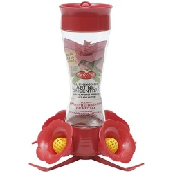 Perky Pet Pinched Waist Glass Hummingbird Feeder with Perches