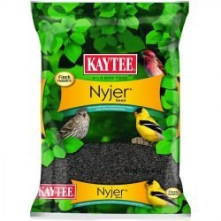 Kaytee Nyger Seed Bird Food (8 lbs)