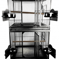 "24""x22"" Double Stack Cage with Play Top"