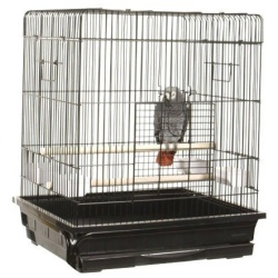 """2 Pack of 25""""x21"""" Flat Top Cage"""