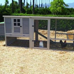 Precision Extreme Hen House Coop Taupe 111X40X41