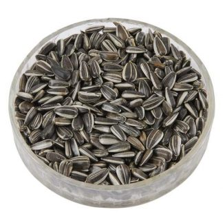 Sunflower Seeds-Raw In-Shell (1oz Black)