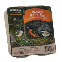 BO .72LB ORANGE SUET CAKE