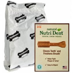 Nylabone Nutri Dent Natural Dental Chew Treats - Filet Mignon Flavor (Mini - 125 Count - (Dogs up to 10 lbs))