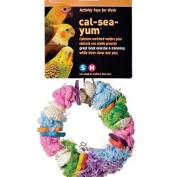 Prevue Pet Products Cal-Sea-Yums Dollar Bird Toy