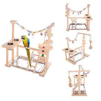 QBLEEV Parrot Playstand Bird Play Stand