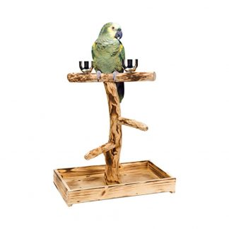 """Penn Plax Bird Perch With 2 Stainless Steel Feeding Cups and Wood Drop Tray (10.5"""" X 8.9"""" X 11.75"""")"""